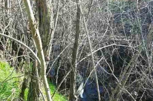Аварийно-възстановителни дейности по почистване на коритото на р. Бяла река